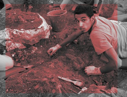 Séjours été 2021 – Devenir spationaute ou paléontologue